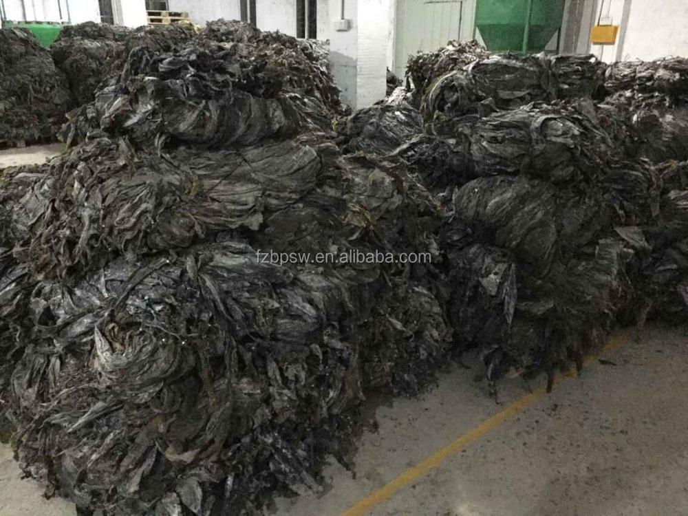 how to make dried seaweed snacks