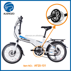 utility vehicle electrical bike, electric bike hub motor 500w