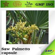 saw palmetto extract fatty acid tablets