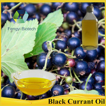 cosmetic raw material black currant oil for moisturizing