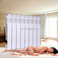 Professional Manufacture Competitive Price Home Heating Art Radiators