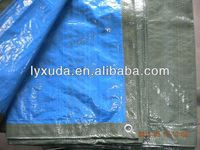 agricultural and double car cover tarp canopy