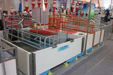 animal farm breeding equipment farrowing pens for pig