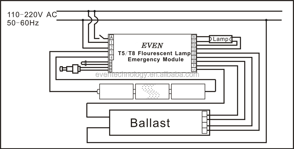6 bulb t5 light wiring diagram  | 580 x 760