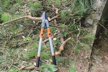 telescopic Alum anvil pruner garden tools