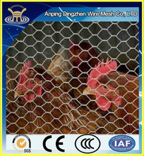 New type woven wire mesh ideas and use for chicken /pvc coated chicken wire netting