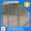 Wholesale Galvanize Tube Large Dog Runs