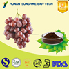 Plant Extract Grape Seed Extract / Proanthocyanidin 1% ~ 98% for Anti-aging & Antianaphylaxis