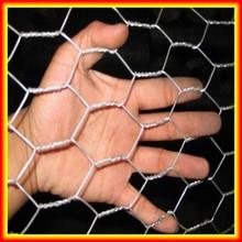 cheap price anping galvanized chicken coop wire mesh/hexagonal wire mesh