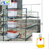 2013 Hot-sell H type Broiler Chicken Cage(Welcome to Visit our factory)