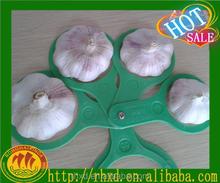 6cm White Garlic Normal White Garlic Seller