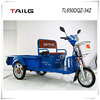 China's strong steel frame 650W 48V electric three wheels motorbike TL650DQZ-34Z for sale