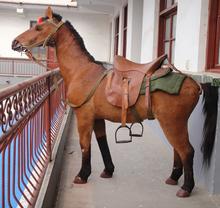 2015 nuova grandezza naturale cavallo elementi di novità