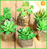 Hot selling mini artificial succulent plants