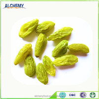 Wholesale good quality dried grapes
