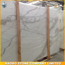 Elegant Decoration construction Statuario White Marble