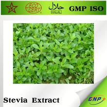 Healthy Stevia Extract