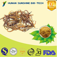 100% Natural Uncaria Gambier Extract 5% Alkaloids
