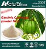 High Qulity 60% Garcinia Cambogia Fruit Extract HCA