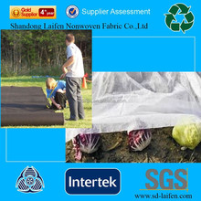 agriculture black polypropylene fabric film manufacture for Greenhouse& banana bags &weed control &frost protection&Mulching