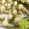 Super wholesale Chinese herbal medicines dried flower clearing heat and useful for hot eyes herbs molihua dry jasmine flower tea
