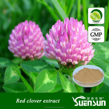 Factory hot selling natural Red Clover Extract