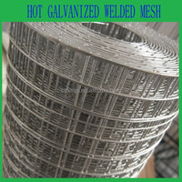 Metal wire mesh factory, galvanized welded mesh