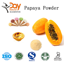 2015 New Food Grade Fruit Extract High Quality Pure Natural Papaya Powder