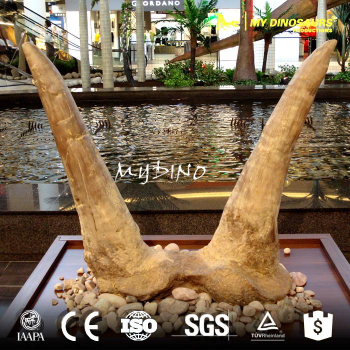 Triceratops horn.jpg