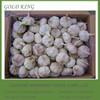 Chinese Nature Garlic Exporters with Best Garlic Price