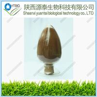 ISO&Kosher 2.5%-5% Triterpene Glycosides Cimicifuga powder Racemosa P.E.