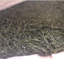 Salted sea kelp