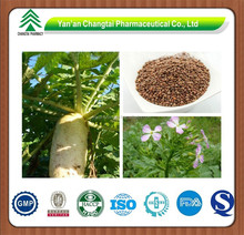 GMP Supplier High Purity Radish Seed Extract Raphanus Sativus L.