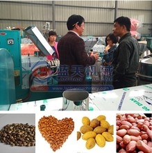 Factory direct sales production small olive oil mill