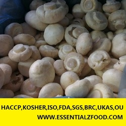 IQF frozen Champignon mushroom whole cut sliced and dices 2015 new