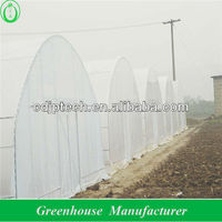 low cost poly tunnel greenhouse for sale