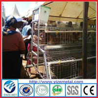 alibaba china supplier pvc coated/galvanized chicken cage/poultry chicken cages feeding