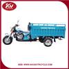2015 New Design Top Sell Environmental New Technology 3 Wheel 150cc Tricycle For Cargo And Passenger In China Factory