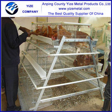 automatic poultry battery cage for nigerian farm/ayer bird poultry cage pvc coated