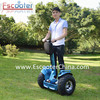 CE approved 3 wheel electric chariot shenzhen for sale