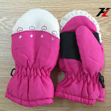 Kids Embroidery Patterns Thinsulate and Waterproof Fur Lined Mitten Ski Gloves