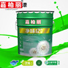 Caboli Synthetic Resin Emulsion Paint With Alkali Resistance