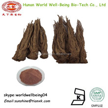 China Danggui Angelica Sinensis Root Extract powder 1%Ligustilide / Angelica Sinensis Extract 10:1 /Ligustilide Extract Angelica