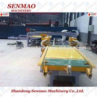 Continuing hot double cut saw/plywood table saw machine /woodworking machine