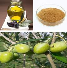 High quality Anti-Oxidant olive leaf extract powder in bulk 3%- 20% Hydroxytyrosol