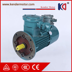 Hot Sale Anynchronous AC Electric Motor With Large Machine
