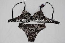 Elegant Women Underwear Sex Dress Bra Set