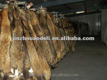 real genuine raccoon fur with head and tail for fashion and warm with thick long hair