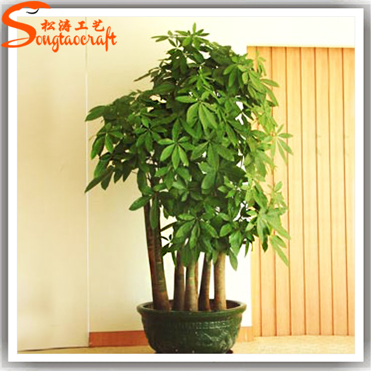 All types of decorative indoor plants plastic plants for Plant decorations home