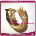 Diferentes tipos de cabello humano remy sub-consejo la extensión del pelo